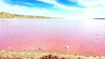Pink Lake - Port Gregory