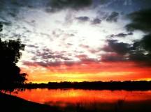 Bibra Lake Reserve